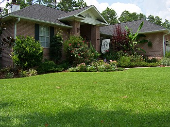 Green day landscaping lawn maintenance services milton for Local lawn care services